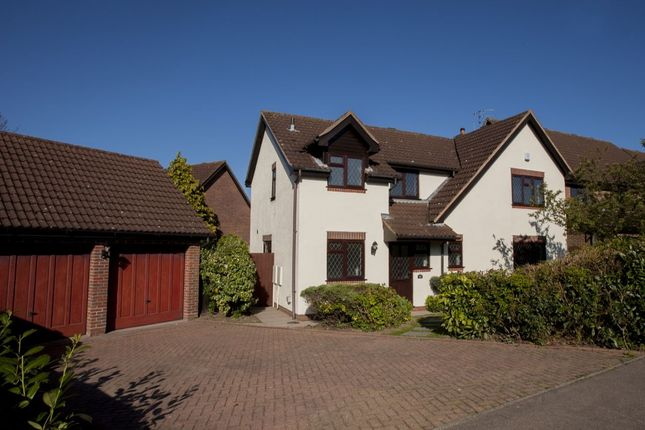 Thumbnail Detached house for sale in Kingswood Avenue, Taverham, Norwich
