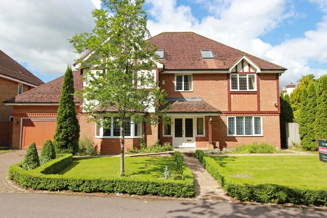 Thumbnail Detached house to rent in Eyhurst Park, Outwood Lane, Kingswood, Tadworth