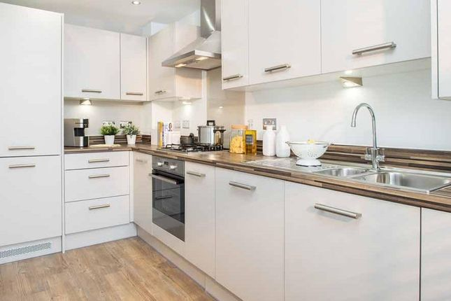 """Thumbnail Terraced house for sale in """"Padstow"""" at Kergilliack Road, Falmouth"""