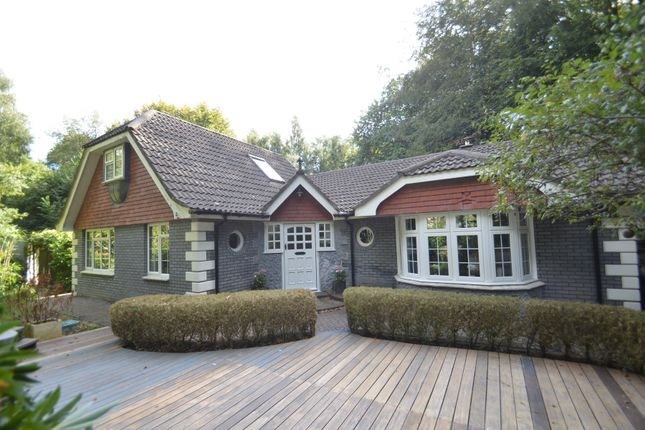 Thumbnail Detached house for sale in Alverstone Road, Alverstone
