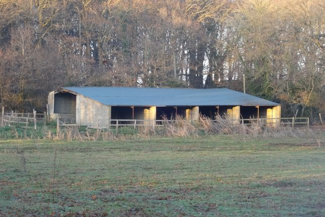 Thumbnail Barn conversion for sale in Brissenden Green Lane, Bethersden