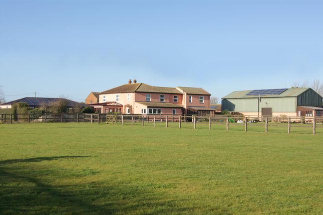 Thumbnail Detached house for sale in Brand Road, Great Barton, Bury St. Edmunds