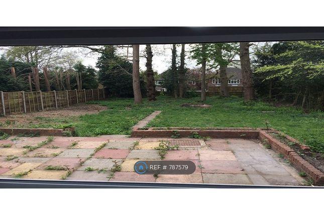 Garden of Hempstead Road, Watford WD17