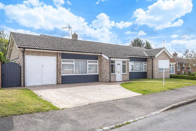 Detached bungalow to rent in The Croft, Harwell