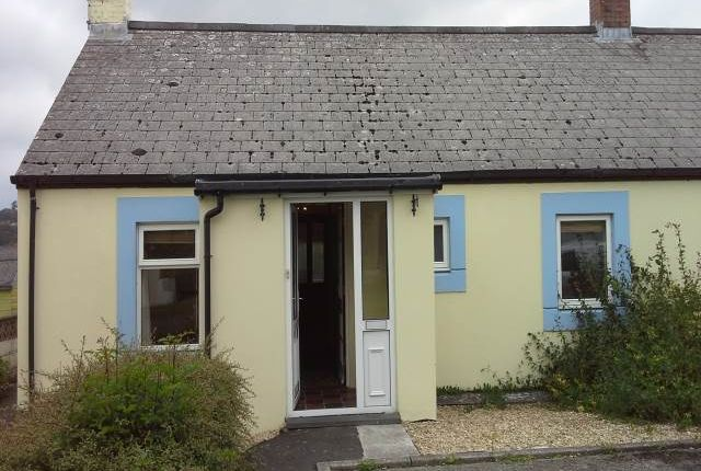 Thumbnail Semi-detached bungalow to rent in Bro Meillion, Cellan, Lampeter