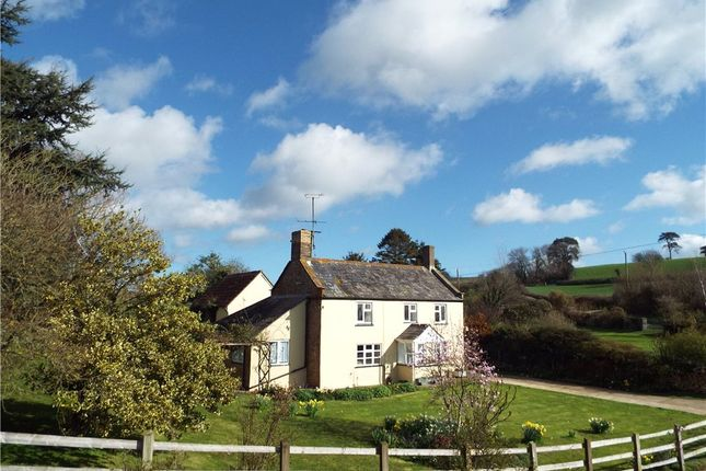 Thumbnail Equestrian property for sale in West Milton, Bridport, Dorset