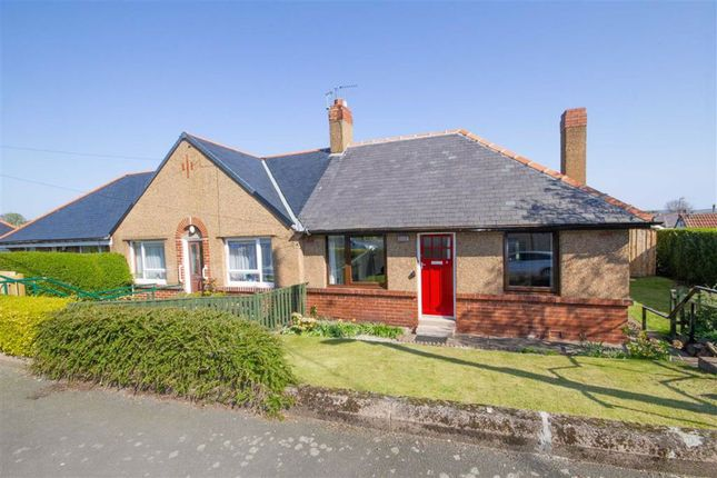 Thumbnail Semi-detached bungalow to rent in Oliver Road, Wooler