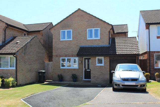Thumbnail Detached house for sale in Bilberry Grove, Taunton, Somerset