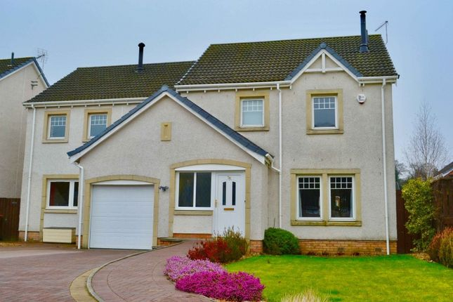 Thumbnail Detached house for sale in Tullibody Road, Alloa, Clackmannanshire