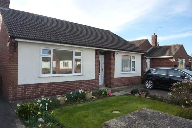 Thumbnail Cottage to rent in Poplar Crescent, Romanby, Northallerton