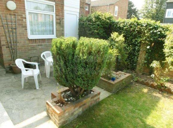 Garden (3) - Resized For Website