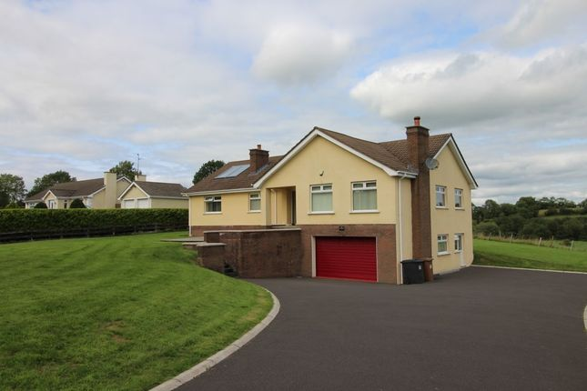 Thumbnail Bungalow for sale in Belfast Road, Glenavy, Crumlin