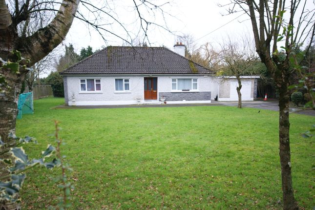 Thumbnail Bungalow for sale in St. Judes, Geraldine Road, Athy, Kildare