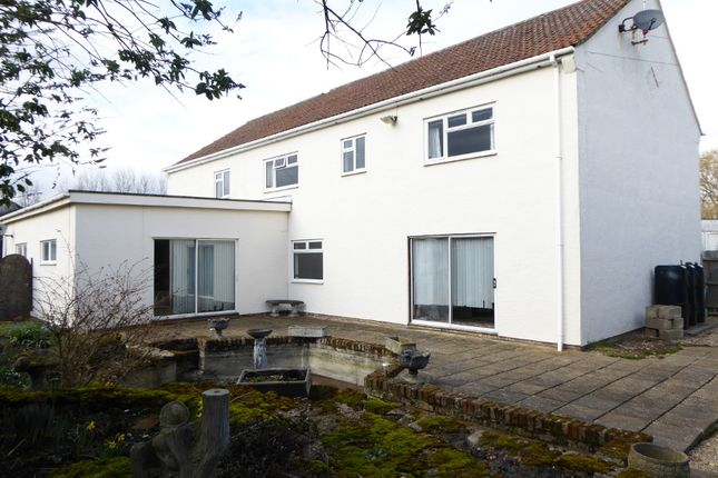 Thumbnail Detached house for sale in Walpole St Peter - Wisbech PE14, Cambridgeshire,