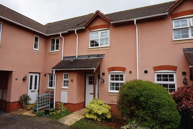 Thumbnail Property to rent in Jubilee Gardens, Sidford, Sidmouth