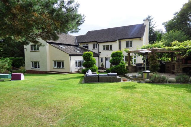 Commercial Property To Rent Ribble Valley