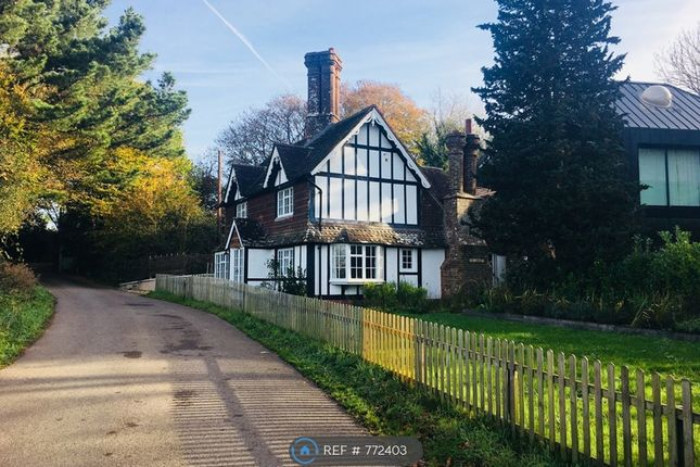 Thumbnail Semi-detached house to rent in New Way Lane, Hurstpierpoint, Hassocks
