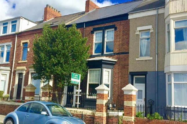 Thumbnail Terraced house to rent in Stanhope Road, South Shields