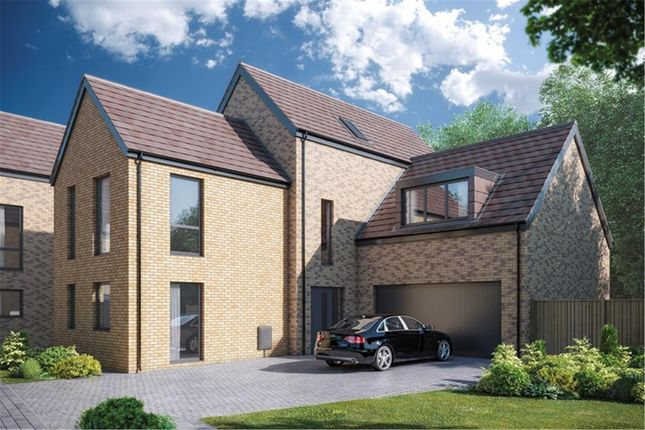 Thumbnail Detached house for sale in The Cannington At Mulberry Park, Bramble Way, Combe Down, Bath, Somerset