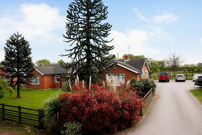 Thumbnail Detached bungalow for sale in Vermuyden Villas, Sandtoft, Doncaster