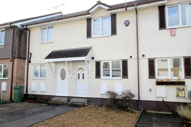 Thumbnail Terraced house for sale in White Friars Lane, St Judes, Plymouth