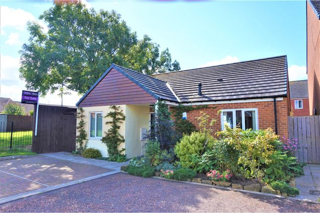 Thumbnail Detached bungalow for sale in Harrington Road, Redcar
