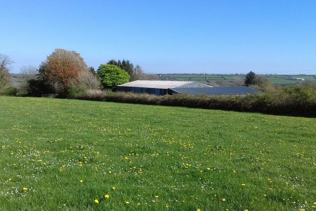 Thumbnail Land for sale in Llangolman, Pembrokeshire