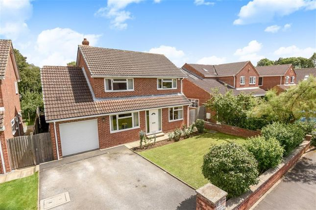 Thumbnail Detached house for sale in Lucas Grove North, Tockwith, York