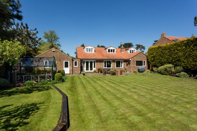 Thumbnail Detached house for sale in Lower Dunsforth, York