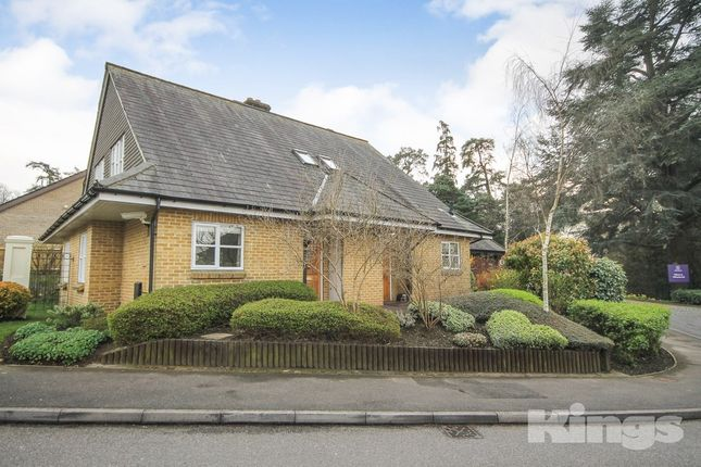 2 bed semi-detached house for sale in Willicombe Park, Tunbridge Wells