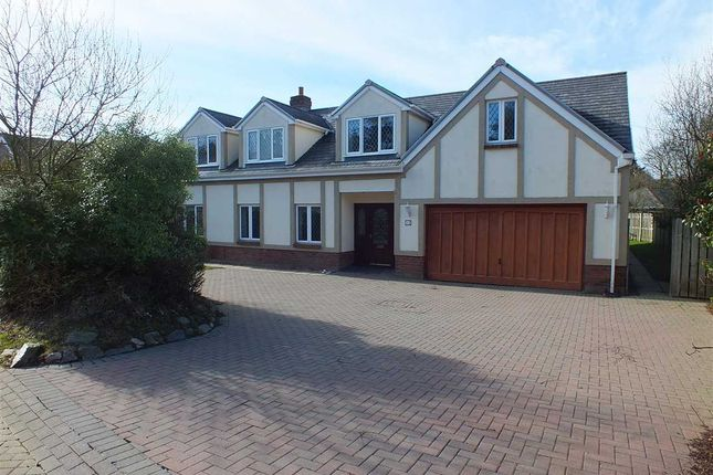 Thumbnail Detached house to rent in Glen Darragh Gardens, Glen Darragh Road, Glen Vine, Isle Of Man