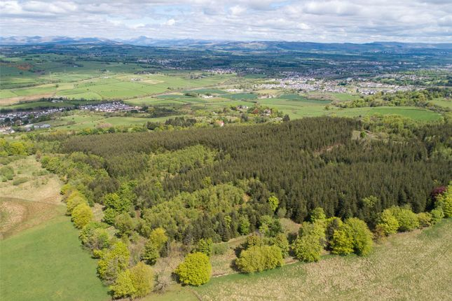 Land for sale in Skiff Wood, Howwood, Johnstone, Renfrewshire PA9