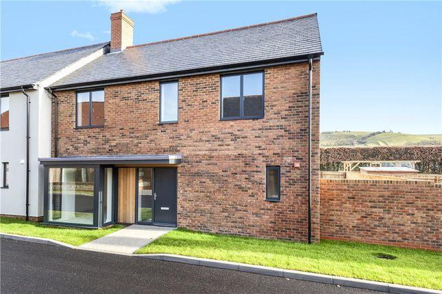 Thumbnail Semi-detached house for sale in Broadridge Views, Sydling St. Nicholas, Dorchester, Dorset