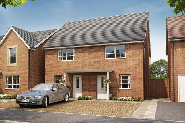 "Thumbnail Semi-detached house for sale in ""Waltham"" at Somerset Avenue, Leicester"