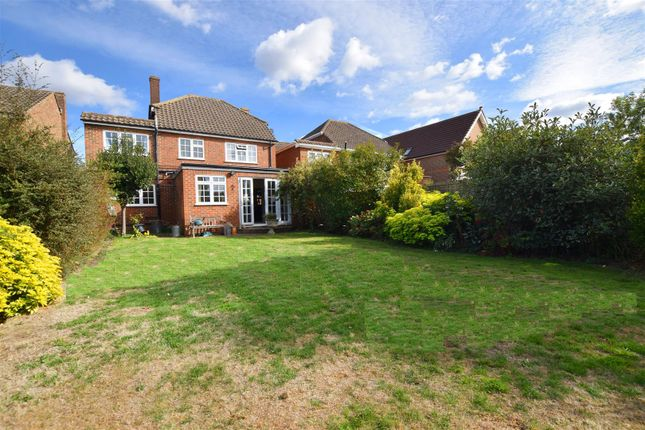 Thumbnail Detached house to rent in Nightingale Road, Hampton