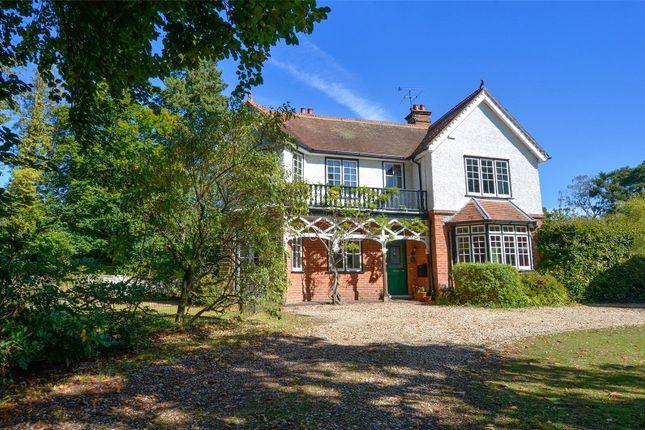 Thumbnail Detached house for sale in Pinehurst Road, West Moors, Ferndown, Dorset