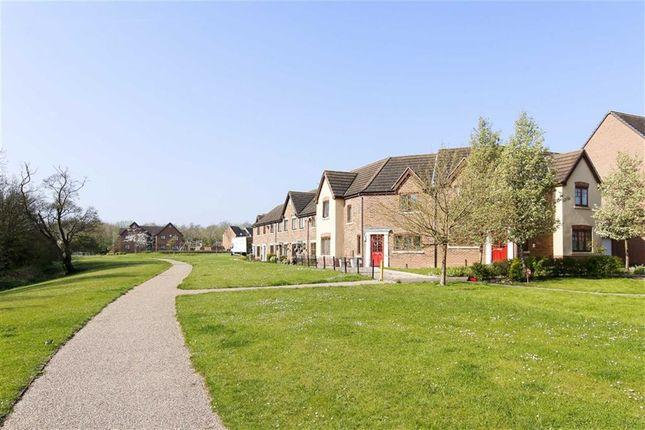 Thumbnail Semi-detached house to rent in Miserden Crescent, Westcroft, Milton Keynes