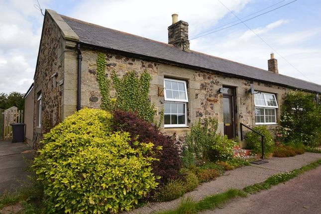 Thumbnail Terraced house for sale in Easington, Belford