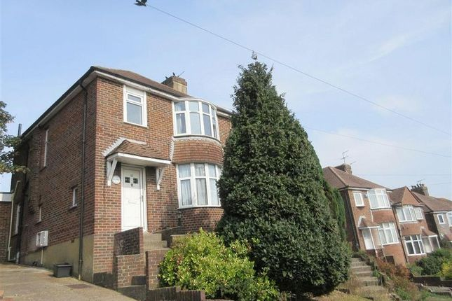 Thumbnail Semi-detached house to rent in Park Road, Brighton