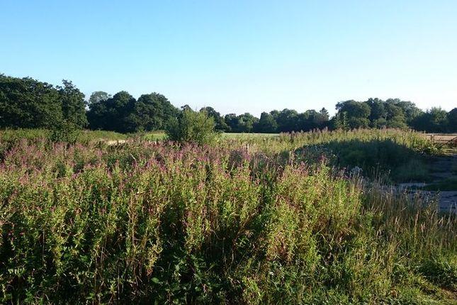 Photo 2 of Ashurst Wood, East Grinstead RH19