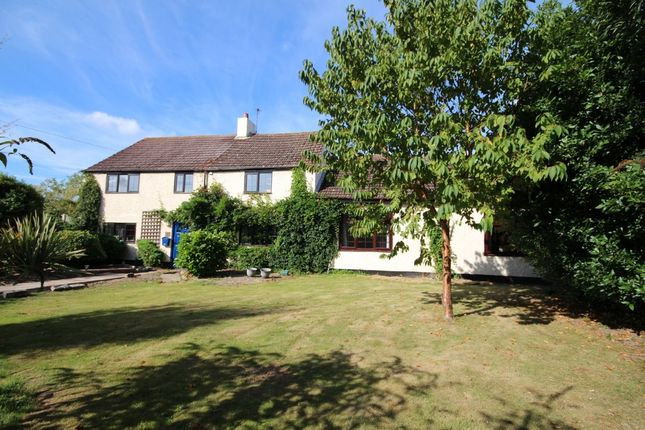 Thumbnail Detached house for sale in Main Road, Ormesby, Great Yarmouth