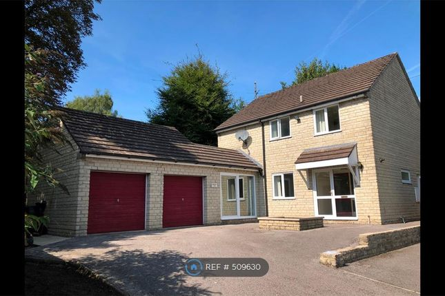 Thumbnail Detached house to rent in Ivy Road, Chippenham