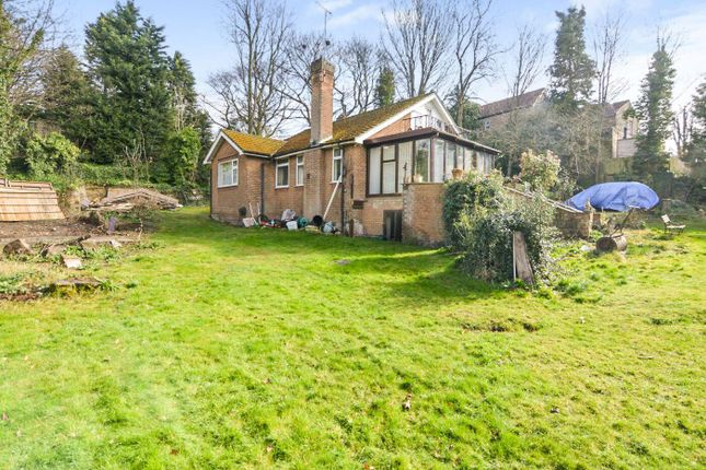 Thumbnail Detached bungalow for sale in The Park, Mansfield