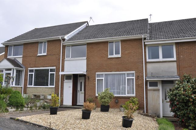 Thumbnail Terraced house to rent in Marypole Road, Exeter