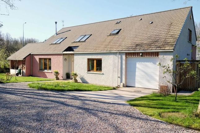 Thumbnail Detached house for sale in Invergordon