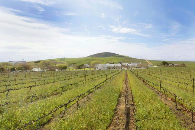 Thumbnail Farm for sale in Western Cape, South Africa