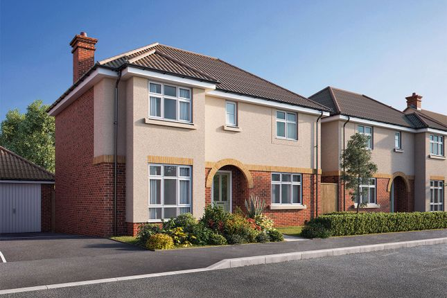 """Thumbnail Detached house for sale in """"The Beech"""" at Park Avenue, Chippenham"""