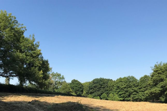 Thumbnail Land for sale in Standon Lane, Ockley, Dorking