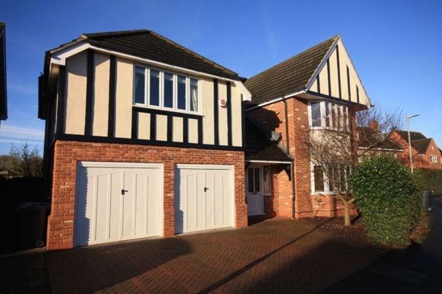 Thumbnail Detached house to rent in Haydn Jones Drive, Nantwich