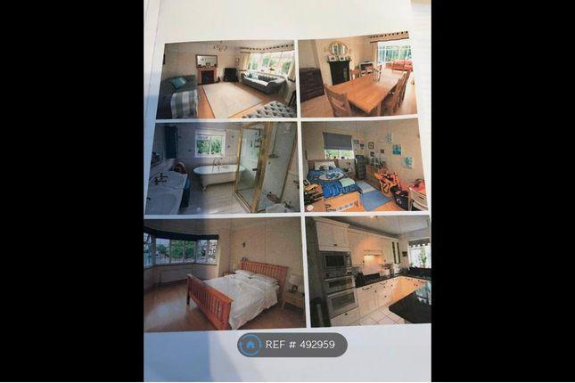 Thumbnail Semi-detached house to rent in Pickhurst Lane, West Wickham